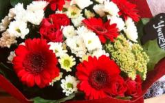 какие цветы дарить учителю на День учителя